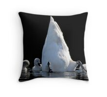 Cygnets and Upended Swan Throw Pillow