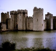 Bodiam Castle, East Sussex by Lisa Hafey