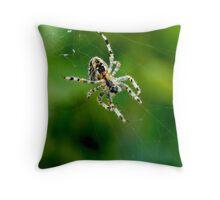 Garden Spider Throw Pillow
