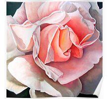 """Single Rose""  Poster"