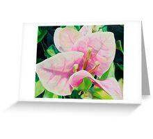"""Blushing Bugambilia"" - pink bougainvillea blossoms Greeting Card"