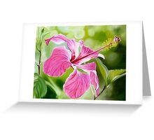 """Hibiscus"" translucent pink hibiscus flower Greeting Card"