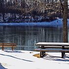 Snowy day at Old Davidsonville State Park by Susan Blevins
