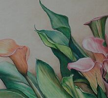 Calla Lilies by Charlotte Yealey