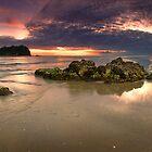 Motuotau Island dawn Rocks by Ken Wright