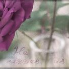 Rose In Vase by JulieLegg