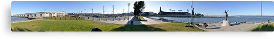 Panorama of San Francisco Giants by schimkent