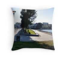 Panorama of San Francisco Giants Throw Pillow