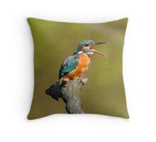 Yawning Kingfisher Throw Pillow