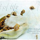 Art of life by Olga