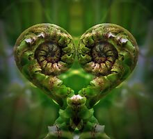 Koru Love by Melissa Thorburn