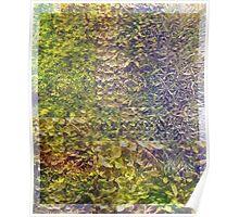 Sedum Wall Abstract Poster