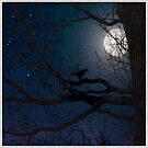 The Raven Moon by Mary Ann Reilly