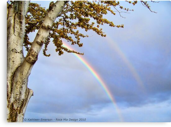 Double Rainbow by rocamiadesign