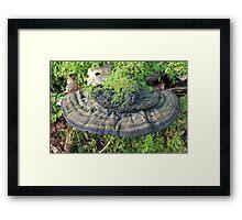 Willow Bracket Framed Print