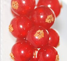 Red Currants by Elaine123