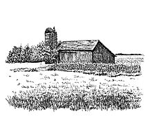 Old Barn, Merrillville, IN  Photographic Print