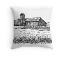 Old Barn, Merrillville, IN  Throw Pillow