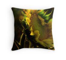 Sunshine for Anne Gitto Throw Pillow