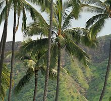 Hawaii: Honolulu Palms by Kezzarama