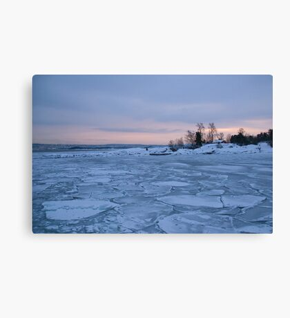 All this ice ... Canvas Print