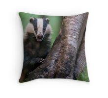 Badger, Devon Throw Pillow