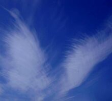 BLUE ANGEL WINGS...CLOUDS by RoseMarie747