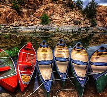 Canoe Color by Bob Larson