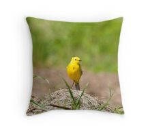 Yellow Wagtail, Somerset Throw Pillow