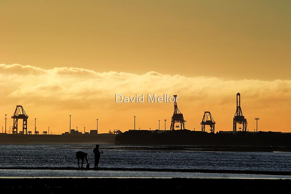 industrial savannah by David Mellor