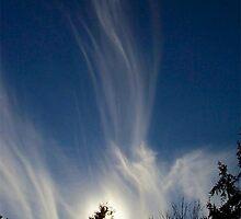 Spirits In The Sky by Ginny York