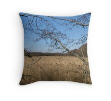 Field of gold (with hedges and sedges, not barley) Throw Pillow