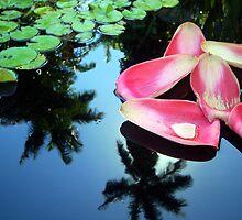 Petals, Paddies,and Palms by Dan Bronish