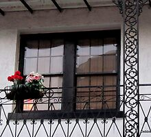 Fancy Window, Bourbon St., New Orleans by Debbie Robbins