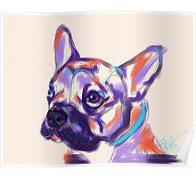 Dog Reggie Poster