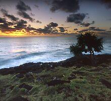 Ocean Breeze by Jason Asher