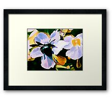 """""""Laticia"""" - Mexican flower and a large black bee Framed Print"""