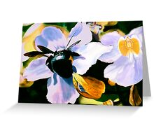 """Laticia"" - Mexican flower and a large black bee Greeting Card"