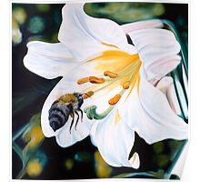 """""""Natural Seduction"""" - large lily painting with a bee Poster"""