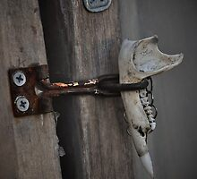 Lockjaw - Possums keep out by badn