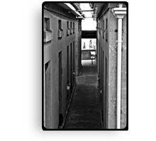 Dull lines Canvas Print