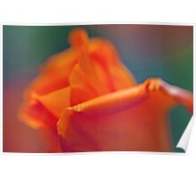 Abstract Poppy Poster