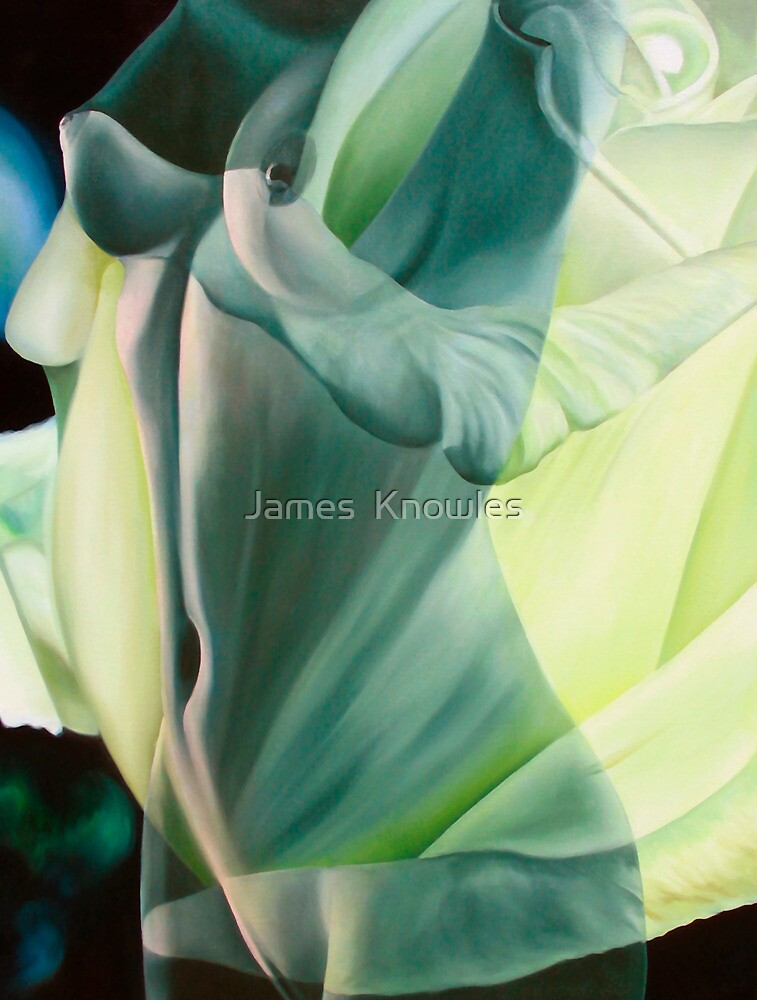 """Primavera Seis"" - human and floral subject combined by James  Knowles"