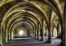 Fountains Abbey by Svetlana Sewell