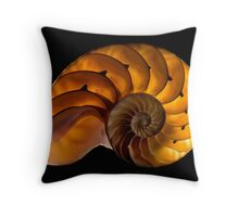 Spira Mirabilis - The Marvellous Spiral Throw Pillow