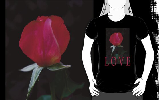 rosebud love t by dedmanshootn