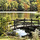 Bridge Walk by Monnie Ryan