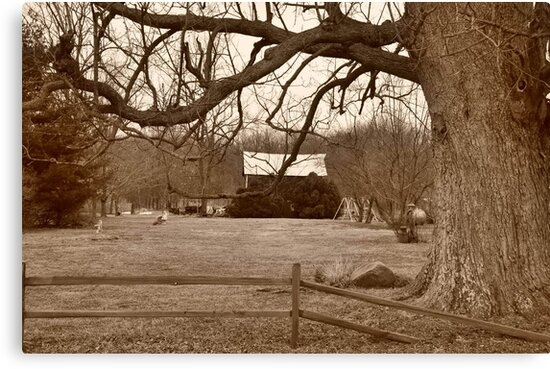 Country scenery Parker City Indiana by mltrue
