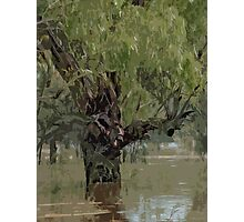 A River In Flood Photographic Print