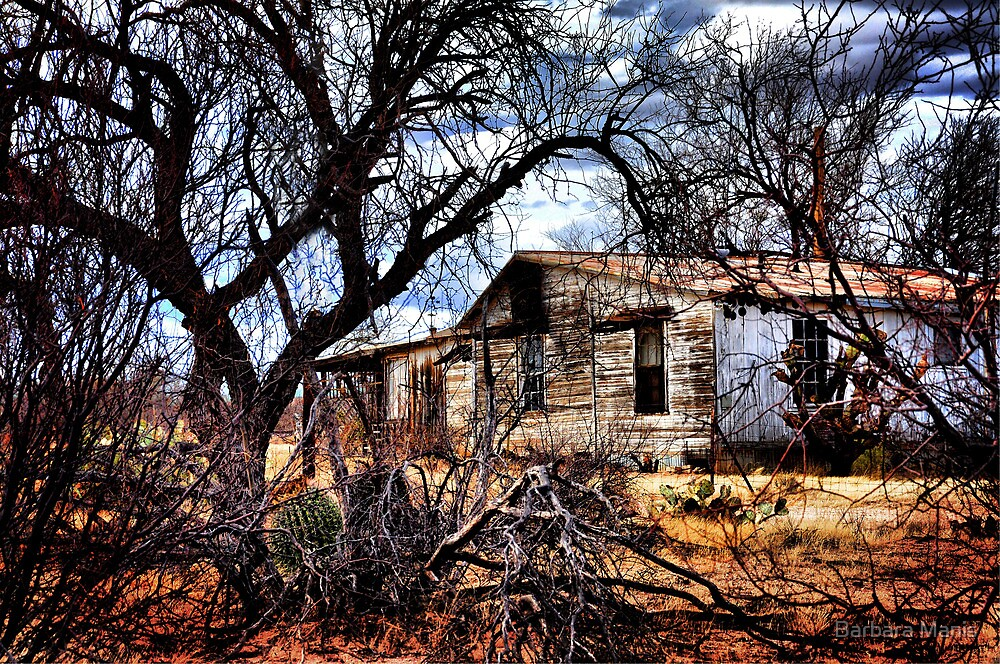 Fixer Upper by Barbara Manis